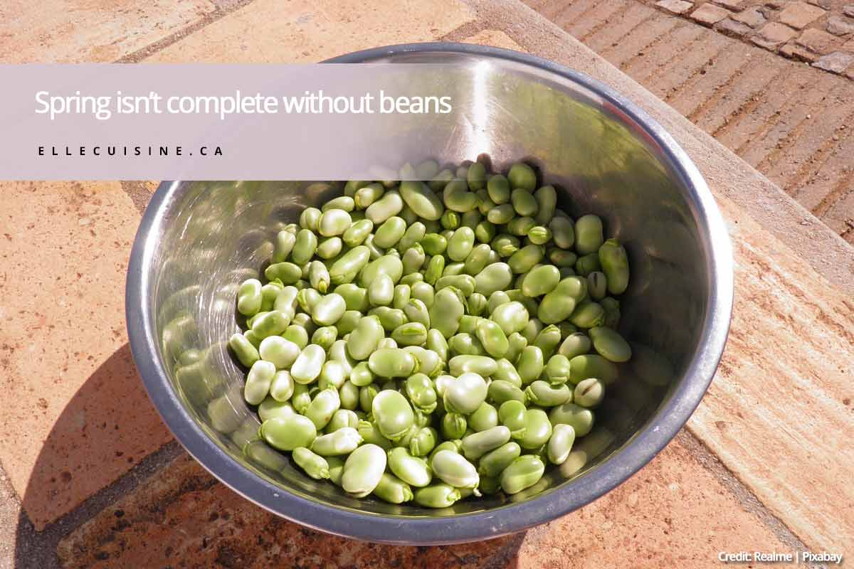 Spring isn't complete without beans